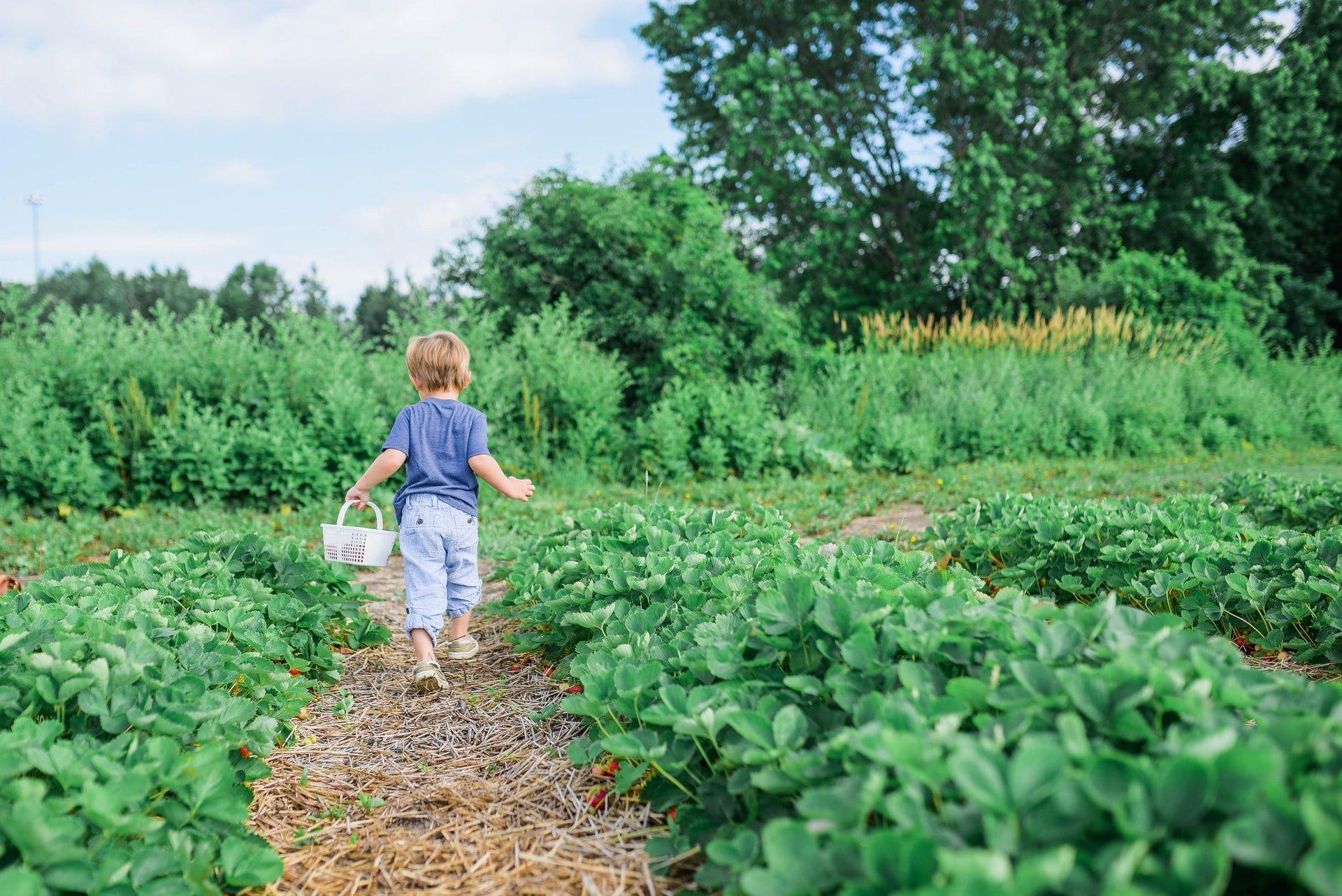 Jour 8: profiter de voir grandir son enfant