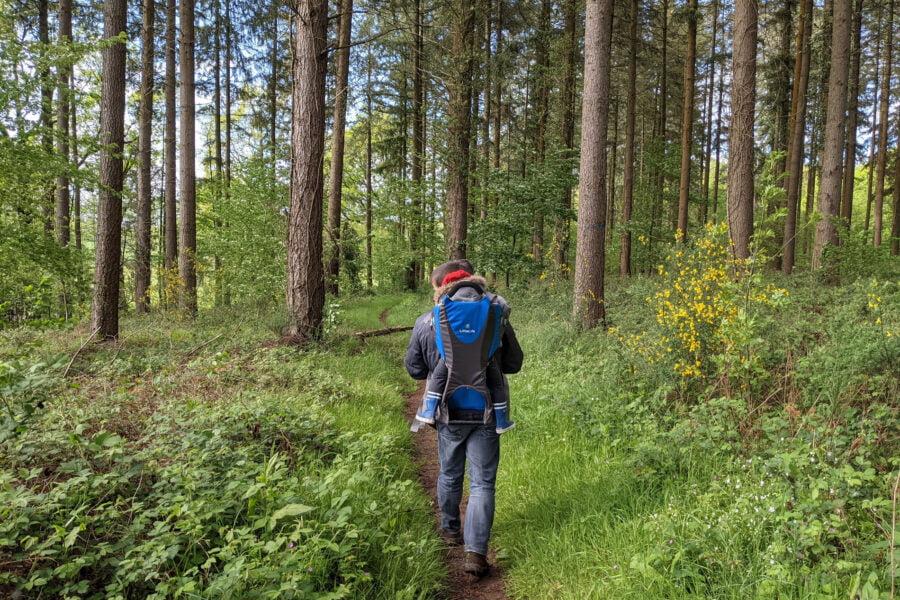 A 5min à pied de ce gîte à la ferme se trouvent des sentiers de forêt pour de balades très agréables